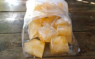 How to Make Jewelweed Ice Cubes